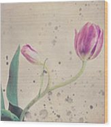 Stained Tulip Wood Print by Cristina-Velina Ion