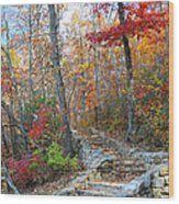 Staircase To Fall Wood Print
