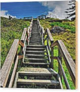 Stairs From The Beach Wood Print
