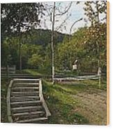 Stairs In The Park Wood Print