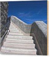 Stairway At Mount Diablo State Park Wood Print