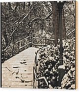 Stairway In Central Park On A Stormy Day Wood Print