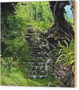 Stairway Through The Forest Wood Print