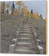 Stairway To Autumn Wood Print