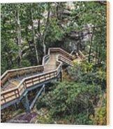 Stairway To Chimney Rock Wood Print