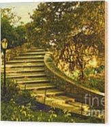 Stairway To Nirvana Wood Print