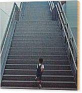 Stairway To... Wood Print