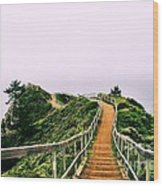 Stairway To Stinson Wood Print