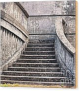 Stairway To The Unknown Wood Print by Sandra Bronstein