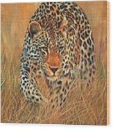 Stalking Leopard Wood Print