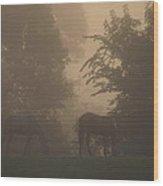 Stallions In The Fog Wood Print