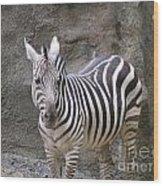 Standalone Zebra Wood Print
