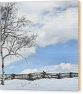 Standing Alone Wood Print by Todd Hostetter