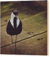 Standing Bird Wood Print