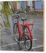 Standing In The Rain Penang Wood Print