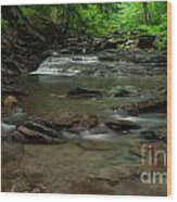 Standing In The Stream Wood Print