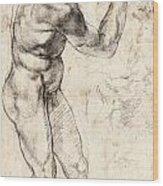 Standing Male Nude Wood Print