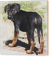 Standing Puppy Wood Print