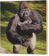 Standing Silverback Gorilla Wood Print