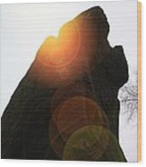Standing Stone At Gardom's Edge Wood Print