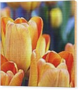 Standing Tall Tulips Wood Print