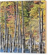 Standing Timbers At Merrill Creek Wood Print
