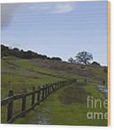 Stanford University The Dish Hiking Trail Wood Print