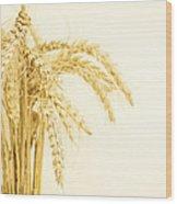 Staple Crop Wood Print