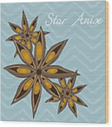 Star Anise Art Wood Print by Christy Beckwith