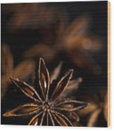 Star Anise Study Wood Print