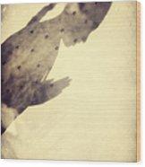 Star Child Wood Print