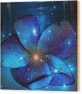 Star Light Plumeria Wood Print