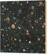 Star Nursery 8051 Wood Print
