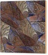 Star Segments Wood Print