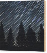 Star Trails And Pine Trees Wood Print