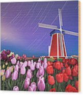Star Trails Windmill And Tulips Wood Print
