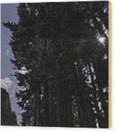 Starburst on Chain Lakes Trail Wood Print