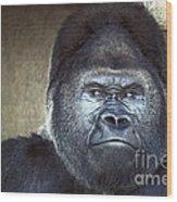 Stare-down - Gorilla Style Wood Print