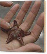 Starfish 1 Wood Print