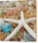 Starfish Art Prints Shells Agates Coastal Beach Wood Print by Baslee Troutman