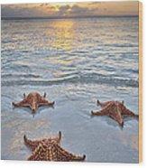 Starfish Beach Sunset Wood Print