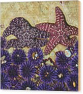 Starfish Dance Wood Print