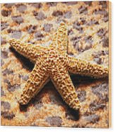 Starfish Enterprise Wood Print by Andee Design