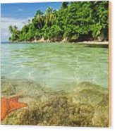 Starfish In Clear Water Wood Print