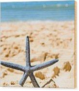 Starfish On Algarve Beach Portugal Wood Print