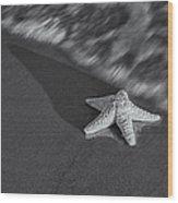 Starfish On The Beach Bw Wood Print