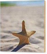Starfish On The Beach Wood Print