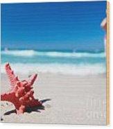 Starfish On Tropical Beach Wood Print