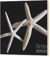 Starfish Tango Wood Print