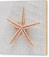 Starfish Wood Print by Tom Gowanlock